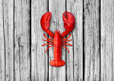 Lobster on old white wood background as weathered copy space representing seafood and marine ocean or sea lifestyle. Stock Photo