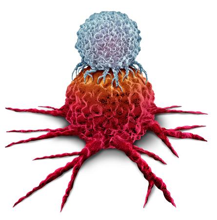 Cellule T attaquant une tumeur cancéreuse en tant que concept de thérapie du système immunitaire par immunothérapie en tant que traitement oncologique biomédical ou biomédical sous forme de rendu 3D sur fond blanc.
