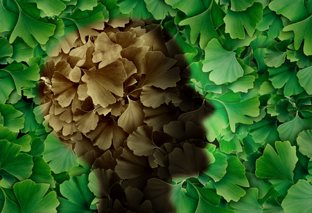 Concept of alzheimer disease with a Ginkgo biloba leaf background and a human head representing the dementia symptoms as cognitive loss of memory in a 3D illustration style.