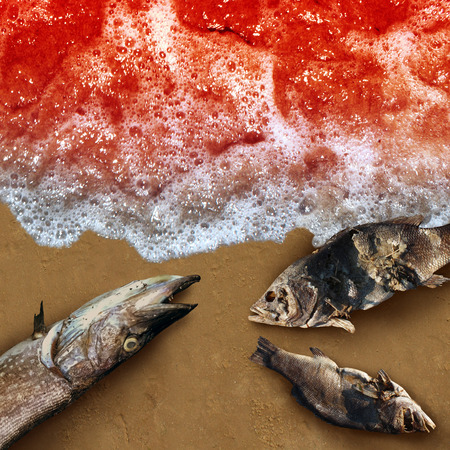 Red tide algae deadly natural toxin found in the ocean or sea as a marine life death concept as a conceptual in a 3D illustration style. Stock fotó