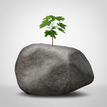 Herausforderungskonzept als Geschäftskampfmetapher als grüner Pflanzensetzling, der von einem unfruchtbaren Felsen in einem 3D-Illustrationsstil wächst.
