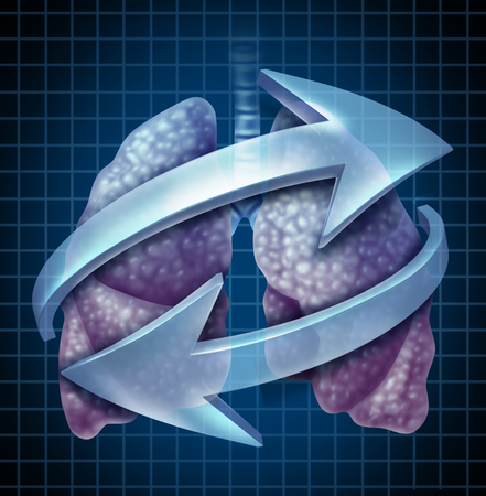 Breathing lungs human respiratory system symbol as an anatomical concept for inhaling and exhaling with 3D illustration elements. Stock fotó