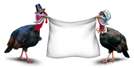 Thanksgiving blank sign as a gobbler and hen turkey holding a white banner with 3D illustration elements. Stock Photo