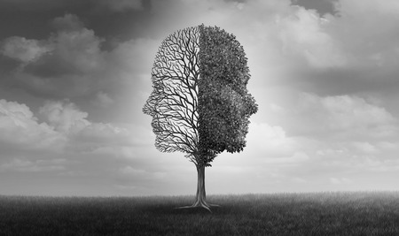 Emotional disorder and human emotion or mood problem as a tree shaped as two human faces with one half empty branches and the opposite side full of leaves as a medical metaphor for psychological with 3D elements. Stockfoto