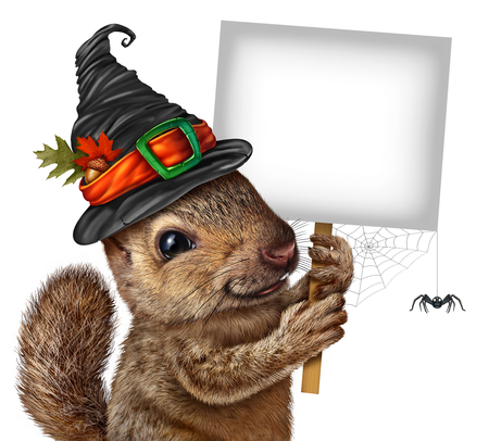 Halloween squirrel sign concept as cute happy rodent with spider wearing a spooky witch hat holding a blank sign as a festive fall and autumn holiday seasonal and thanksgiving symbol with 3D elements.