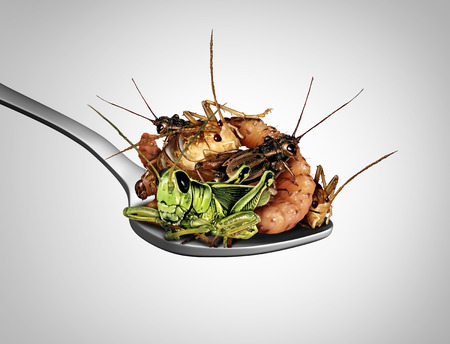 Eating bugs and eat insects as exotic cuisine and alternative high protein nutrition food as a cricket grasshopper and larva insect in a spoon as a symbol for entomophagy with 3D illustration elements.