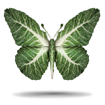 Vegan green leaves symbol and veganism or vegetarian concept as a plant based vegetable regimen diet lifestyle as kale leaves shaped as a flying butterfly in a 3D illustration concept. Stock Photo