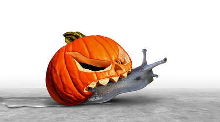 Pumpkin funny snail symbol as a jack o lantern halloween animal icon in a 3D illustration style.