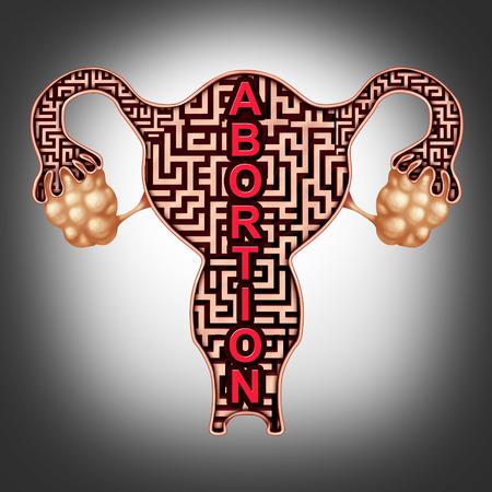 Aborto o concepto de atención médica como un feto símbolo en un feto humano humano como un laberinto como una enfermedad de salud para la salud de la operación para un embarazo con diferentes elementos de diseño Foto de archivo - 109067447