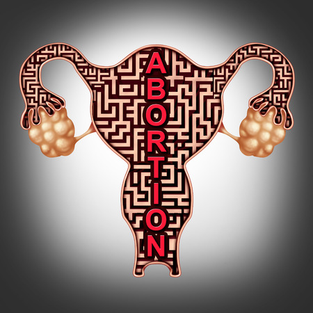 Abortion or miscarriage medical concept as a fetus symbol in a pregnant human uterus as a maze as a reproductive health metaphor for termination of a pregnancy with 3D illustration elements. Stock Photo