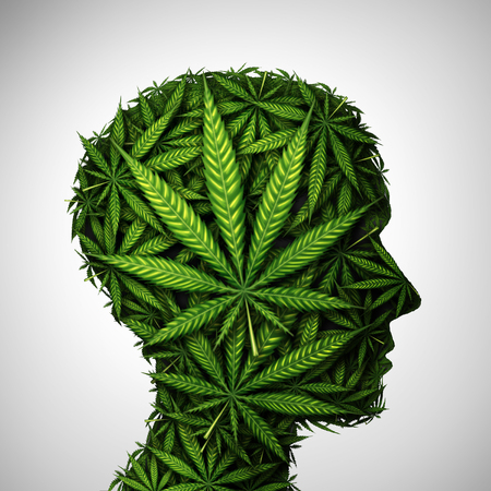 Marijuana head and cannabis consumer symbol as a human face made of weed leaves as a pot or herbal medicine patient and effects on psychology or drug dealer concept in a 3D illustration style. Stock Photo
