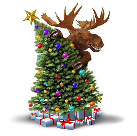 Funny moose decorating a Christmas tree as a winter holiday greeting icon on a white background with 3D illustration elements.