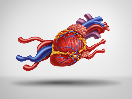 Fast Heart and rapid heartbeat or pulse as a cardiology medical concept as a human circulatory organ shaped as a running animal as a cardiac fatigue idea with 3D illustration elements. Stock Photo