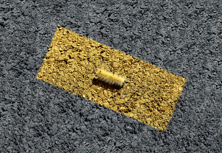 Concept of hiding and blending in as a caterpillar camouflaged within a yellow painted street line in a 3D illustration style.