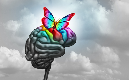 Autistic brain and autism disorder symptoms or asperger syndrome as a neurology icon and mental health spectrum diagnosis concept with 3D illustration elements. Stockfoto - 114513706