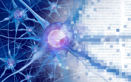 AI and neuroscience aor digital neurology brain function concept as artificial intelligence or virtual reality technology as a 3D rendering. Stock Photo