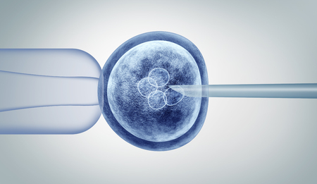 Genetic editing and gene research in vitro CRISPR genome engineering medical biotechnology health care concept with a fertilized human egg embryo and a group of dividing cells as a 3D illustration. Stock Photo