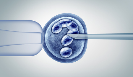 Genetic editing questions and gene research in vitro genome engineering and medical biotechnology as CRISPR health care concept with a fertilized human egg embryo and a group of dividing cells as a 3D illustration. Фото со стока