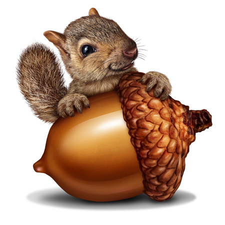 Funny squirrel holding a giant acorn tree nut as a wealth or wealthy metaphor for business and financial savings in a 3D illustration style.
