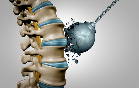 Strong spine and spinal strength human anatomy concept as medical health care body symbol with the skeletal bone structure and intervertebral discs closeup as a 3D illustration.