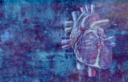 Anatomia del concetto di cuore umano su uno sfondo grunge come simbolo di assistenza sanitaria medica o icona di cardiologia di un organo cardiovascolare interno in uno stile di illustrazione 3D. Archivio Fotografico