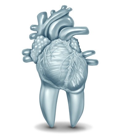 Oral health and heart disease hygiene concept caused by dental plaque and gum disease due to mouth bacterial infection damaging the valves as a tooth shaped as a cardiovascular organ as a 3D illustrat