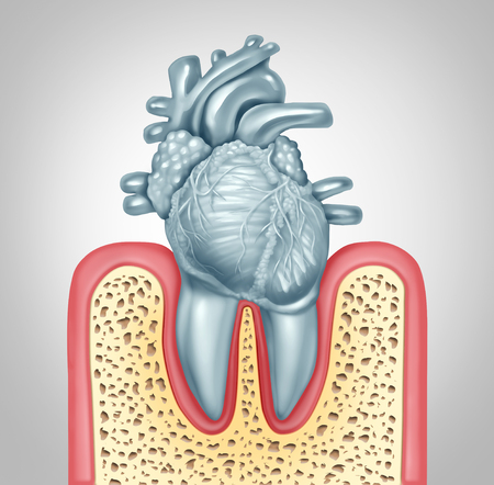 Dental care or oral health and heart disease hygiene concept caused by tooth plaque and gum infection due to mouth bacteria damaging the valves as teeth shaped as a cardiovascular organ as a 3D illust