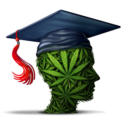Cannabis learning and student marijuana education at school or to learn about weed and social issue of getting high in college and drugs on campus with 3D illustration elements on a white background.