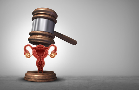 Reproductive rights and abortion law or women health justice as a legal concept for reproduction politics as legislation by government to decide laws concerning pro life or choice with 3D illustration elements. Stock Photo