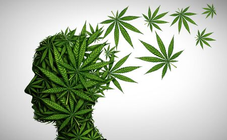 Marijuana effects on the brain and cannabis mood altering chemicals or psychology and drugs concept in a 3D illustration style. Stock Illustration - 127794928