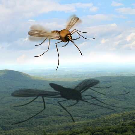 Mosquito danger fear and the risk of mosquitoes in the outdoors transmitting harmful infections as malaria and zika virus as an insect casting a huge shadow in the wilderness as risks of camping in a 3D illustration style.