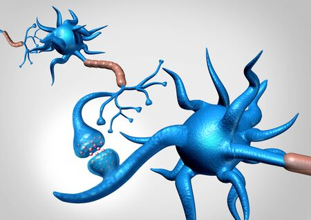 Neuron synapse cells anatomy sending an electrical signal as a neurology brain function related to memory and the nervous system as a 3D illustration.
