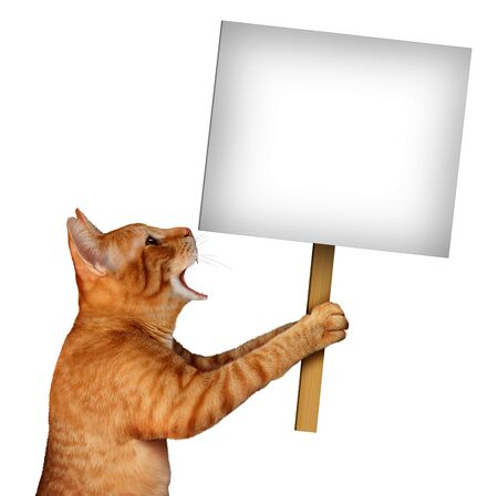 Cat holding a blank sign as a cute tabby feline with an open talking mouth expression communicating a message pertaining to pet care or veterinary services on an isolated white background with 3D illustration elements.