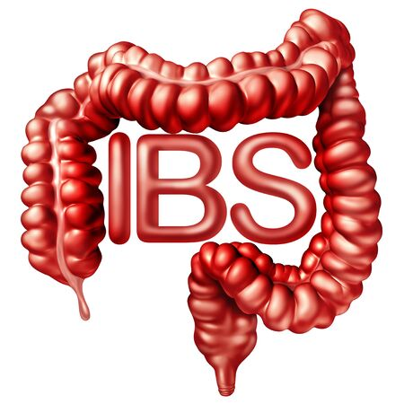 IBS medical concept as painful digestionor irritable bowel syndrome and intestine pain or Intestinal discomfort inflammation problem or constipation with 3D illustration elements.