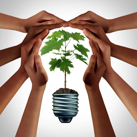 Concept of ecology as diverse hands holding a green plant as an idea of a diverse society protecting the environment shaped as an environmentally friendly lightbulb 3D illustration elements. Stock Photo