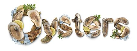 Oysters seafood delicacy text symbol as a fresh raw shellfish symbol with lemons and ice on a white background. Stock fotó