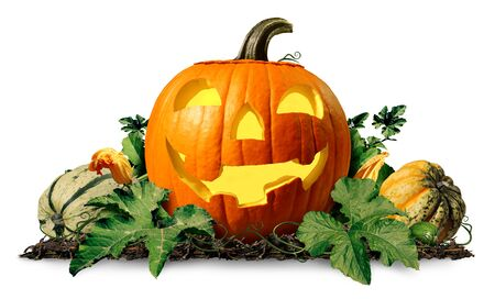 Happy halloween pumpkin jack o lantern with pumpkins and leaves on a white background as a seasonal concept and autumn symbol for a cute holiday squash or thanksgiving time with 3D illustration elements. Stock fotó