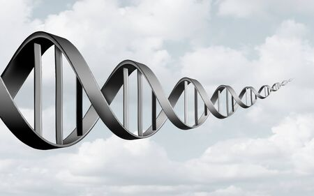 DNA abstract concept as a double helix representing genes and chromosomes or biotechnology in forced perspective as a 3D illustration. Stock Photo