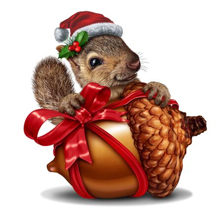 Christmas squirrel gift as a funny and cute animal holding a giant acorn tree nut with a red festive bow as a holiday symbol representing joy and the spirit of giving with 3D illustration elements.
