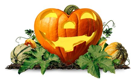 Happy halloween love pumpkin jack o lantern with pumpkins and leaves on a white background as a seasonal concept and autumn symbol as a heart shaped squash with 3D illustration elements. Stock Photo