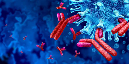 Antibody immune system and Immunoglobulin concept as antibodies attacking contagious virus cells and pathogens as a 3D illustration.