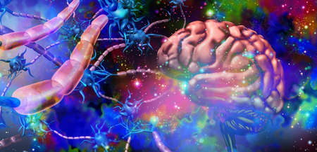 Nervous system neurology and brain nerve cells anatomy concept as human neuron function disorder symbol for multiple sclerosis or alzheimer disease or psychedelics science and with 3D illustration elements. Stock Photo