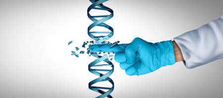 Gene engineering and DNA or genetic therapy as a CRISPR biotechnology concept with a double helix strand as a symbol for genome or chromosome treatment as a science doctor or researcher with 3D illustration elements.