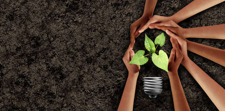 Earth day idea and agriculture support or ecology unity as hands in a group of people connected together helping protect a seedling expressing the feeling of teamwork and togetherness with 3D illustration elements..