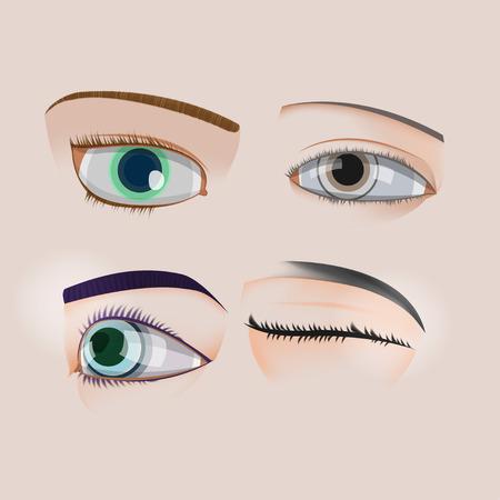 human eye: Woman Human Eye Set Collection