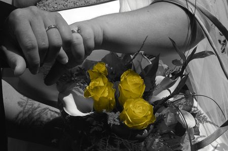 rings and roses in black and white photo