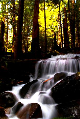 sol duc river: A beautiful waterfall on the Sol Duc River in Olympic National park