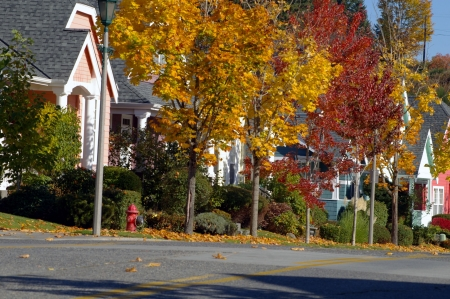 Colorful neighborhood Stock Photo - 4077941