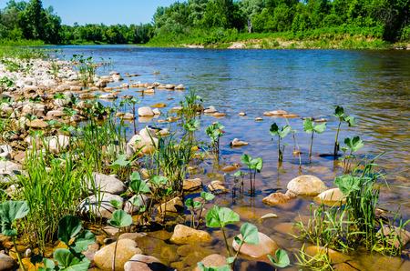 Mountain River Lemeza in the southern Urals. Russia photo
