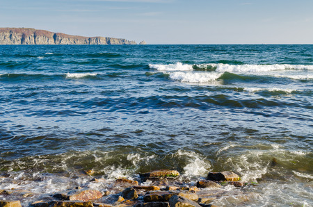 Sea wave breaking on the coast